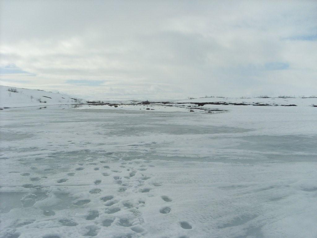 Tuusulanjärvi Kalastus