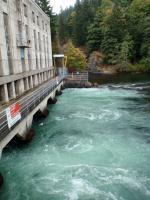 Tätä vehreyttä ei näe kotoisten voimalaitosten alla. Kuva on Campbell Riverin kalojen nousun katkaisevalta padolta. kuva J.Repo (campbell)