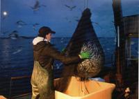 Kalastaja Karoliina Kääpä