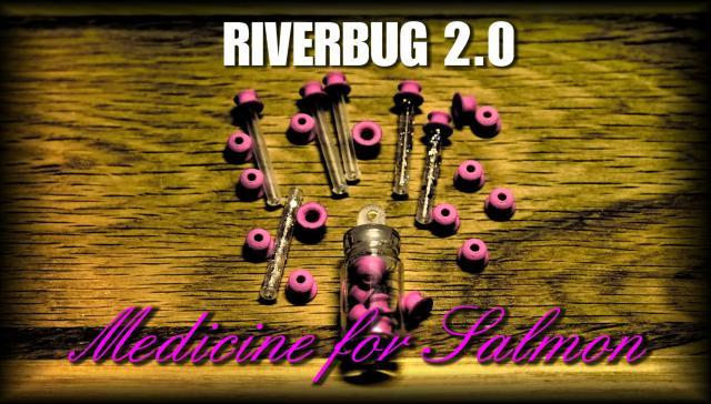 RiverBug 2.0