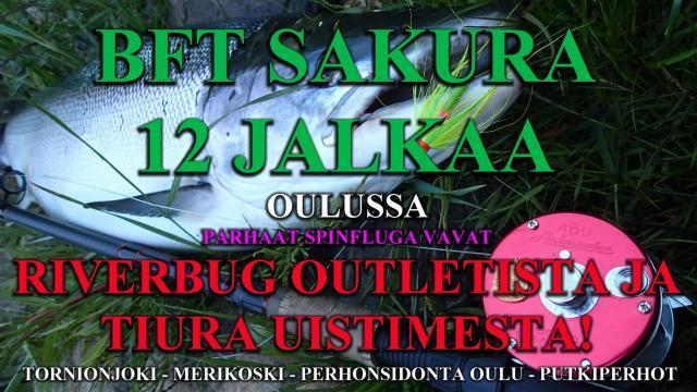 BFT Sakura 12 jalkaa spinflugavapa Oulussa Tiura Uistimesta ja RiverBug Outletista! #bftsakura #bft #sakura #punttivapa #oulu #merikoski #tornionjoki #matkakoski #spinfluga #tiurauistin #tiura #riverbug #lohenkalastus #lohivapa