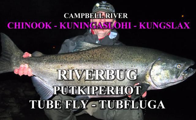 Kuningaslohi RiverBug putkiperholla by River Ranger