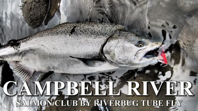 Campbell River Salmon Club by RiverBug Tube fly method #campbellriver
