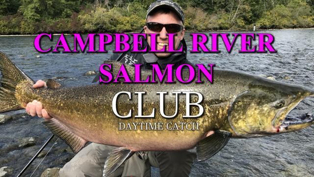 Campbell River Salmon Fishing #campbellriver #campbellriversalmon #salmon #lachs #tubenfliegen #tubefluer