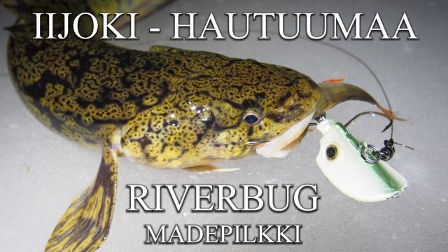 Iijoki madepilkki - RiverBug madepilkki. #madepilkki #iijoki #riverbug