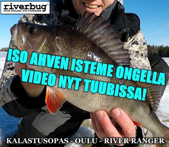 Kilo rikki supersäkällä! #ismete #oulu #kalastusopas #kalastus