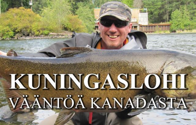 Kuningaslohi by RiverBug putkiperhot / Koura Hooks