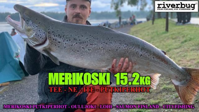 Oulujoki - Merikoski lohiperhot - Tee Ne Ite Putkiperhot By RiverBug. #merikoski #oulu #oulujoki #lohi #putkiperhot #cityfishing #riverbug