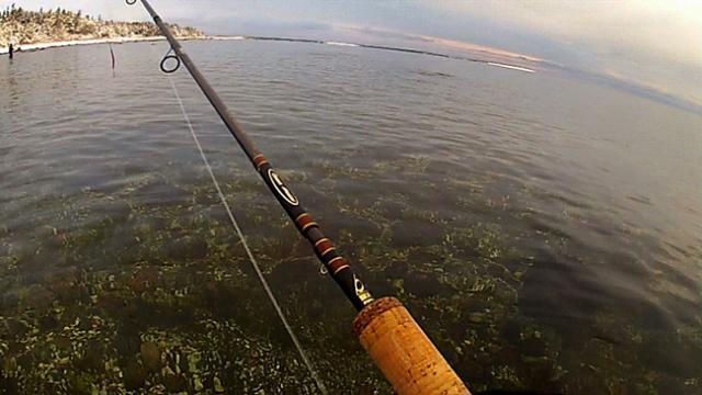 Kirkkaan veden kalastusta