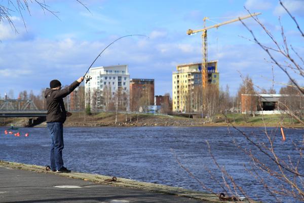Oulujoki Kalastus
