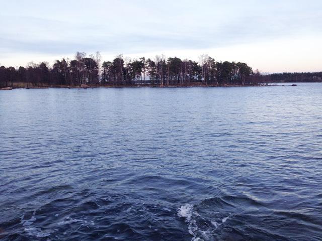Vuosaaren Skatanniemi