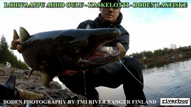 Kaskelotti lohivaappu aihio by RiverBug - Boden Laxfiske test. #lohivaappu #lohi #vaappuaihio #riverbug #kaskelotti  #oulu #verkkokauppa #boden #laxfiske