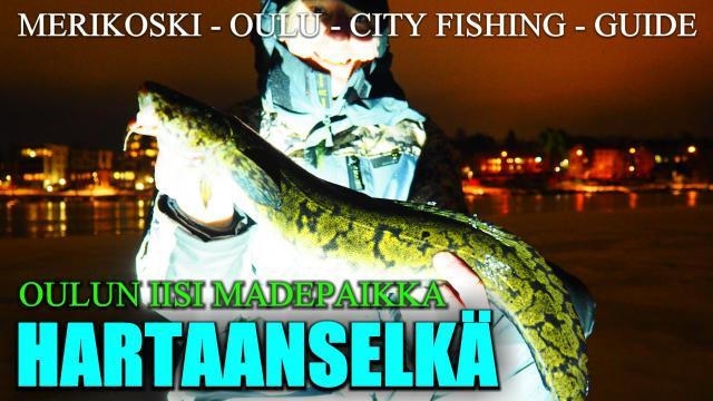 Oulu Hartaanselkä madepilkki. #oulu #made #madepilkki #pilkintä #riverranger #fishingguide #cityfishing