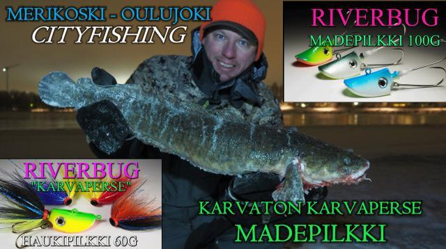 Madepilkki - Made - Karvaton Karvaperse madepilkki - Oulu Cityfishing. #made #pilkki #oulu #karvatonkarvaperse #madepilkki #riverbug #verkkokauppa #perhonsidonta #merikoski #cityfishing