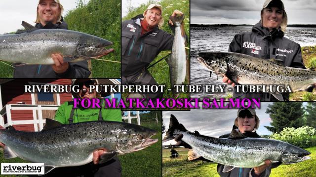 Tornionjoki Matkakoski putkiperhot by RiverBug #lohi #lohenkalastus