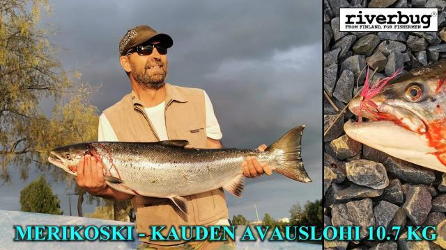 Merikoski Oulu - Kauden 2020 ensimmäinen lohi riverbug putkiperholla! #tornionjoki #matkakoski #riverbug #lohi #putkiperhot #oulu #perhonsidonta #maasaari #monttu #spinfluga #merikoski #oulu #tiurauistin