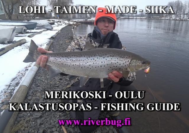 Oulu Fishing Guide - Meritaimen. #meritaimen #oulu #kalastusopas #riverbug #mtovaappu #taimen #lohivaappu