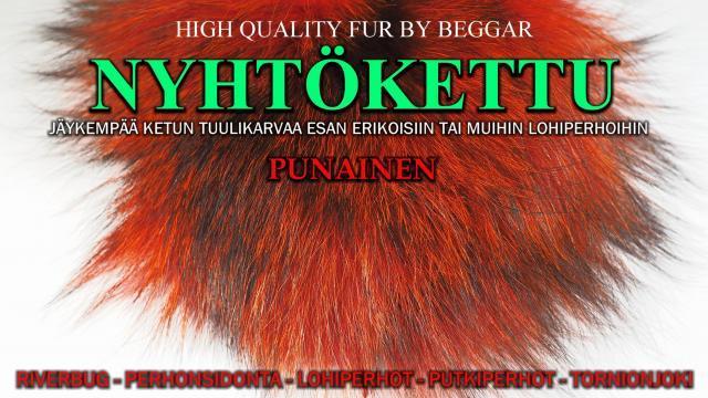 Nyhtökettu Punainen / PuMu - Oulu Perhonsidonta - Ketunkarvat. #punainen #mustakettu #ketunkarvat #oulu #tornionjoki #putkiperhot #riverbug #beggar