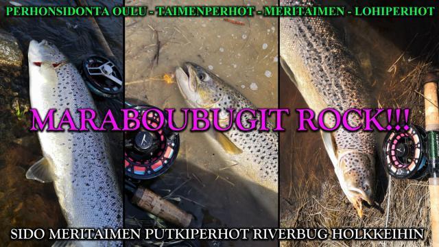Meritaimen putkiperhot RiverBug Holkkiin! #putkiperhot #riverbug #teeneite #marabou #bugiperhot #perhonsidonta #ouluperhonsidonta #meritaimen #taimen