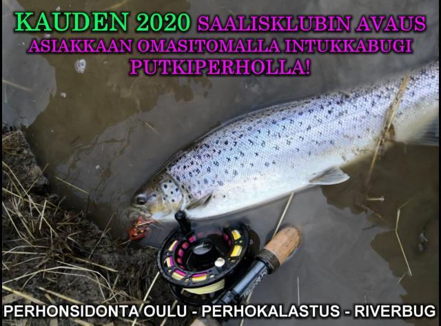 RiverBug Intruder Putkiperho ja meritaimen. #riverbug #putkiperhot #perhonsidonta #oulu #perhokalastus #taimenperhot