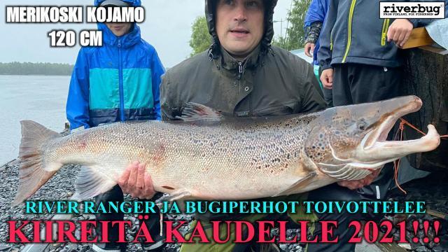 Oulujoki / Merikoski lohi 120 cm. #putkiperhot #malliperho #saalisklubi #riverbug #oulujoki #kojamo #lohi #perhonsidonta #valmisperhot #tubfluga #tubeflue #isolohi #oulu #kireitäsiimoja