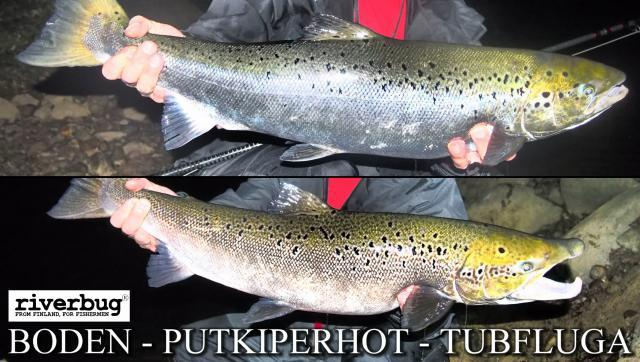 Putkiperhot Boden - Lohiperhot by RiverTube / RiverBug Perhonsidonta