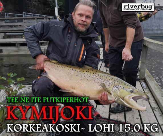 Korkeakoski Kymijoki Kotka lohi. #riverbug #putkiperhot #kymijoki #merikoski #oulujoki #korkeakoski #lohi #putkiperhot #perhonsidonta