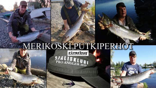 Putkiperhot ja Perhonsidonta Merikosken lohille by RiverBug