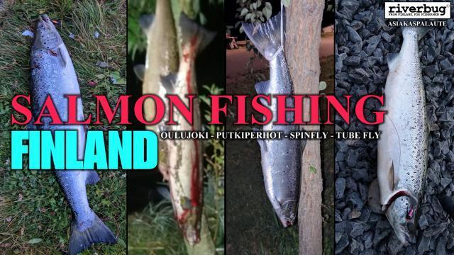 RiverBug putkiperhojen asiakaspalautteita Merikoskelta Oulusta! #merikoski #oulu #oulujoki #lohi #putkiperhot #cityfishing #riverbug #finland #kalastus #asiakaspalaute
