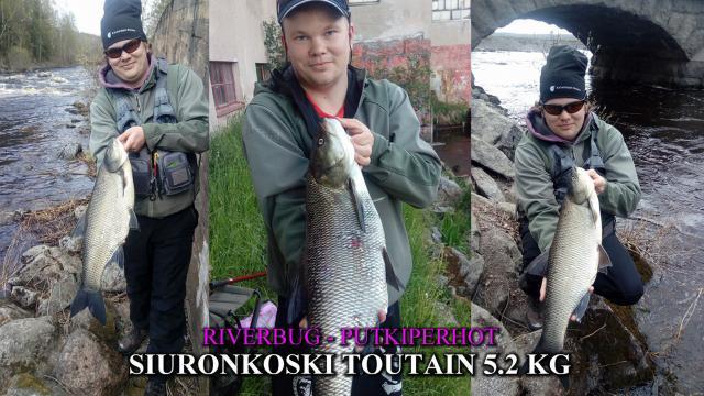 Siuronkoski Toutain RiverBug putkiperhot