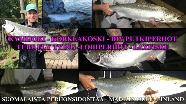 Rekon Kymijoen lohikimaraa kaudelta 2020. #korkeakoski #kotka #kymijoki #putkiperhot #riverbug #perhondisonta #diy #tubfluga #tubeflue #lohiperhot #oulu #ouluperhonsidonta