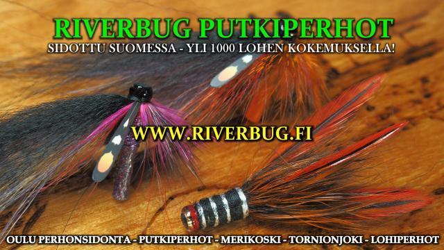 Tornionjoki Putkiperhot by RiverBug / RiverTube. #putkiperhot #tornionjoki #oulu #perhonsidonta #merikoski #spinfluga