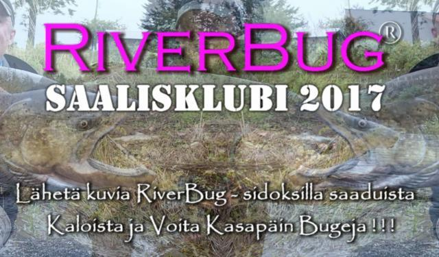 RiverBug saaliskubi 2017