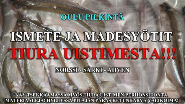 Täkykalat Tiura Uistimesta! Myös kärpäsentoukat! #runkolangat #langat #oulu #perhonsidonta #silikoniletkut #syötit #ismete #säki #ahven #norssi #madesyötti #madepilkki #riverbug