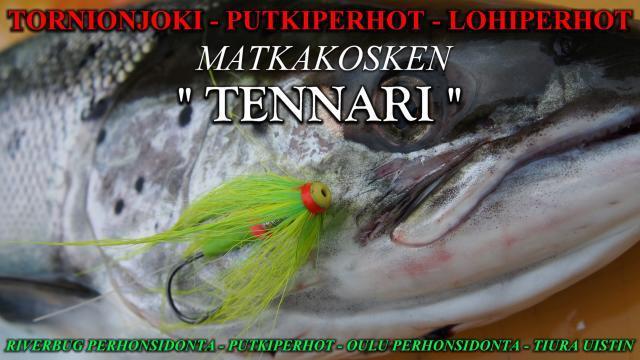 Tornionjoki Kalastusvideot ja Perhonsidonta - Lohenkalastus - Matkakoski - Putkiperhot. #tornionjoki #matkakoski #putkiperhot #videot #kalavinkit #lohenkalastus #punttikoulu #silmät #perhonsidonta #oulu #tennari #tennariperho