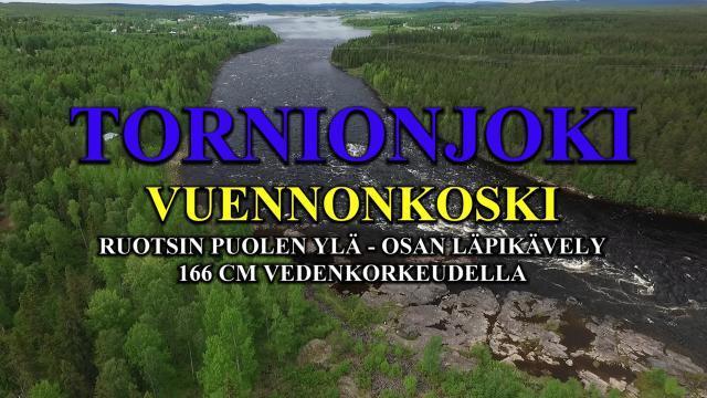 Tornionjoki Vuennonkoski. #tornionjoki #vuennonkoski #kattilakoski #lohenkalastus #lohi #perhokalastus #tornio #lapland #pello #vuento #tonko #spinfluga