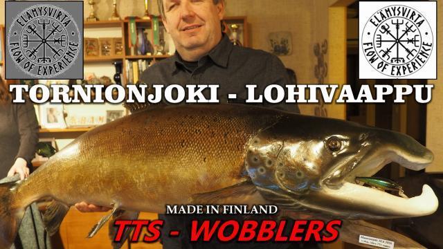 Tornionjoki Lohi TTS Lohivaappu. #tornionjoki #lohivaappu #lohi #suurlohi #TTSvaappu #TTS #wobbler #elämysvirta #flowexperience