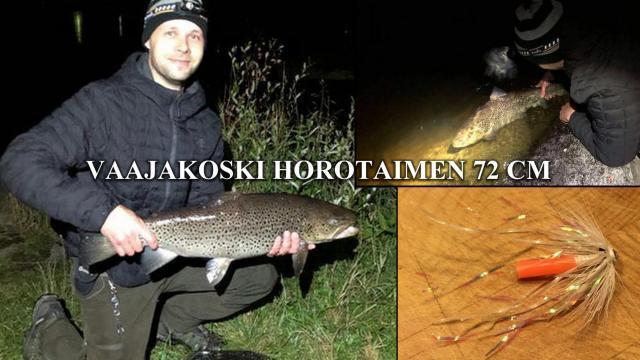 Vaajakosken Iso taimen Bugiperholla! #putkiperhot #riverbug #bugiperhot #diy #taimen #jyväskylä